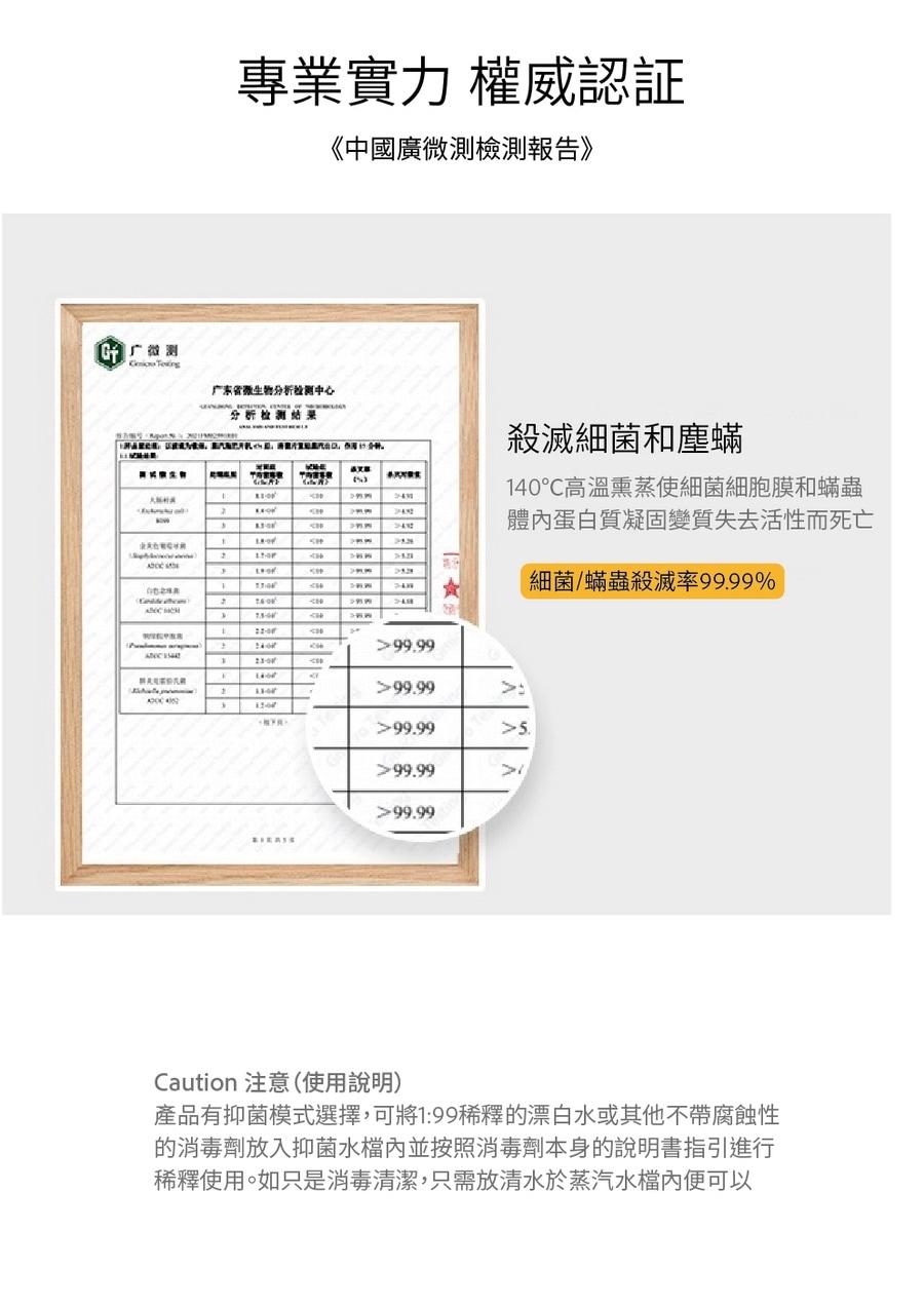韓國 DAEWOO 大宇 SMOP01 蒸汽拖把