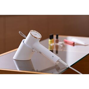 日本家電品牌 Twinbird 美型蒸汽掛熨機